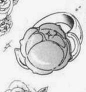 Rose crest manga
