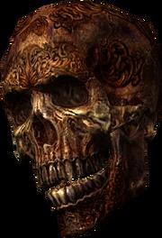 Dragonborn skull