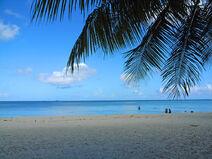 Baai en strand