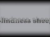 Blindness sheep