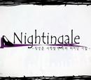 Nightingale ~당신은 사랑받기 위해 태어난 사람~ (Nightingale ~Dangsineun Sarangbatgi Wihae Taeeonan Saram~)