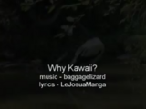 Why Kawaii?