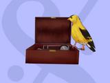 Music Box/baggagelizard