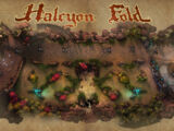 Halcyon Fold