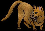 Lev.zástupce