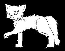 Tulák.kočka Dlouhý