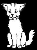 Mazlíček.kočkaD