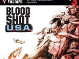 Bloodshot U.S.A. Vol 1 3