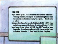 XO-Manowar-v1-3 008 X-Caliber
