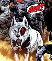 Bloodshot Reborn Vol 1 17 Bloodhound