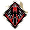 Calamity raven insignia
