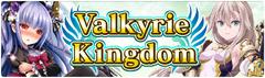 Banner Valkyrie Kingdom
