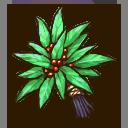 Medicinal Herb (Glow)