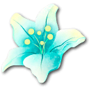 Stellar Bloom