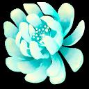 Stellar Flora