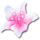 Flame Bloom