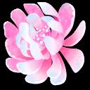 Flame Flora