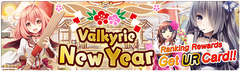 Banner Valkyrie New Year2