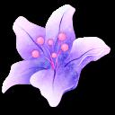 Crescent Bloom