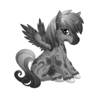 Confusion Alicorn Baby