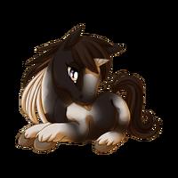 Black Pinto Unicorn Baby