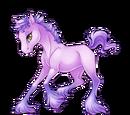 Lilac Paaefarin