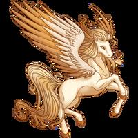 Creme Brulee Pegasus