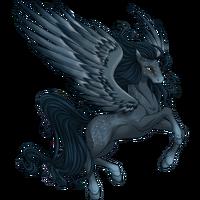 Melancholy Pegasus