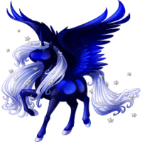 Winter Night Alicorn
