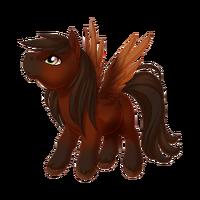 Bay Pegasus Baby