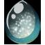 Moonlit Galaxy Unicorn Egg