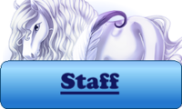 Staff Button Winter