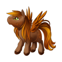 Pumpkin Pie Spices Pegasus Baby