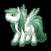 Sage Breeze Pegasus Baby