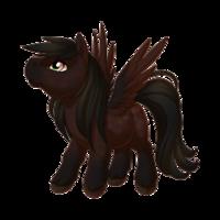 Dark Bay Pegasus Baby