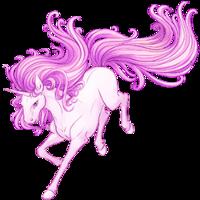 Blush Unicorn