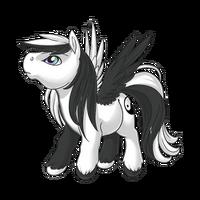 Yin Yang Pegasus Baby