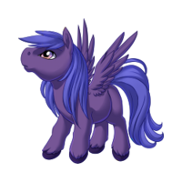 Dusk Pegasus Baby