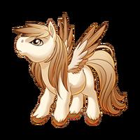 Creme Brulee Pegasus Baby