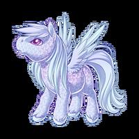 Ice Spirit Pegasus Baby