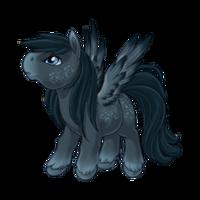 Melancholy Pegasus Baby
