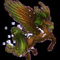 Evergreen Pegasus