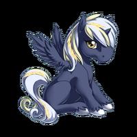 Storm Alicorn Baby