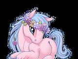 Flower Crowned Unicorn