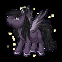 Misty Moon Pegasus Baby