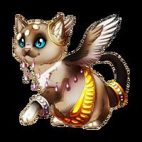 Adorable Temple Kitten Baby