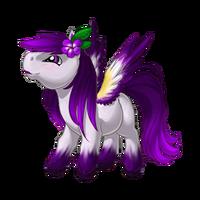 Shy Violet Pegasus Baby