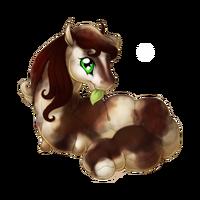 Bay Pinto Spring Fairy Baby