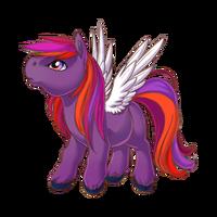 Passion Pegasus Baby