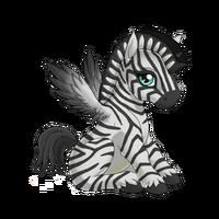 Zebra Alicorn Baby